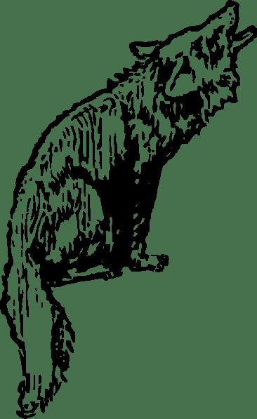 Coyote clip art (118393) Free SVG Download / 4 Vector