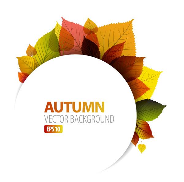 design graphics autumn leaf
