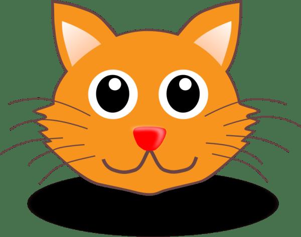Funny kitty face Free Vector 4Vector