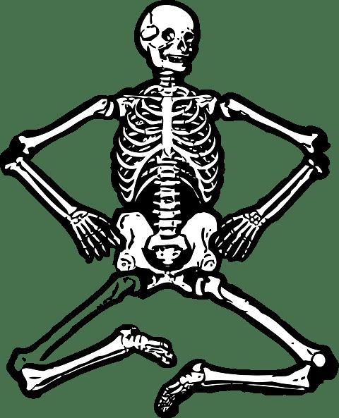 Human Skeleton clip art (108749) Free SVG Download / 4 Vector
