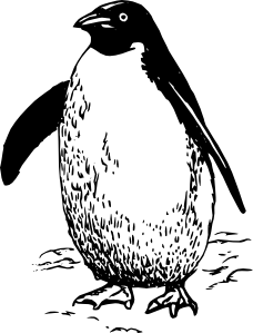 Penguin clip art (118278) Free SVG Download / 4 Vector