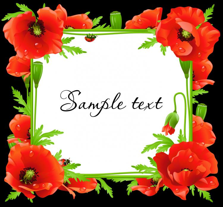 Vector Flowers Frame Free Vector 4Vector