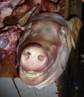 Pig head in the Siem Reap market