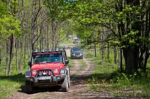 Lagano klizimo kroz prozračne Homoljske šume