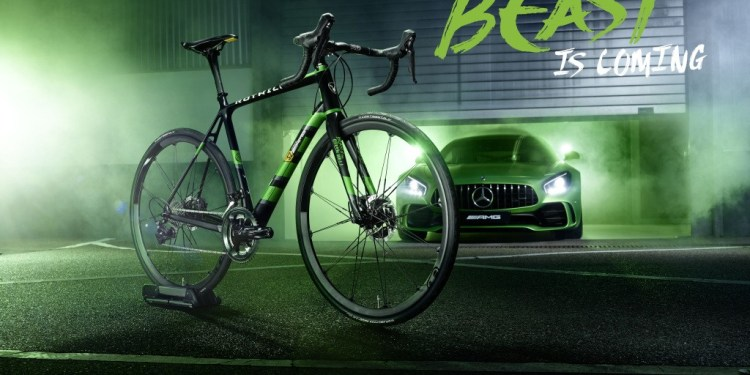 """ROTWILD racing bike R.S2 Limited-Edition """"Beast of Green Hell"""""""