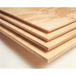 Birch Plywood Price South Africa