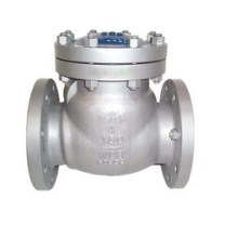 Image result for alloy-20 non-return valve