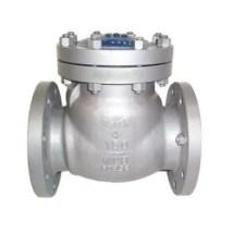 Image result for alloy-20 non-return valve