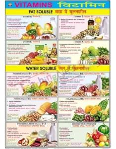 Vitamins charts size  cm also bep edu world id rh indiamart
