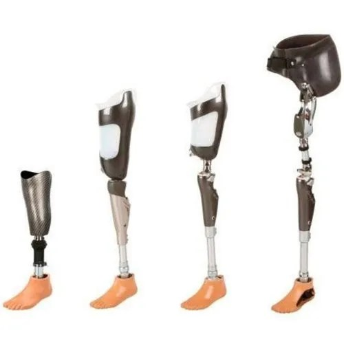 PP Above Knee Artificial Limb Rs 65000 /piece Ability ...