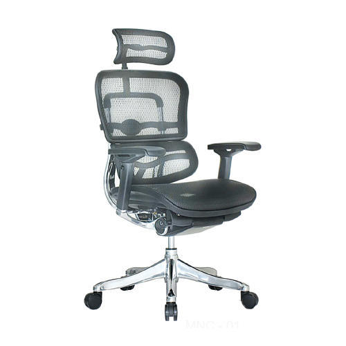 steel net chair monarch double x back dining chairs pp metal rs 9000 piece meghdoot furniture id