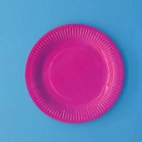 Paper Plates Suppliers & Plain Paper Plates