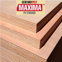10 Ft Plywood Sheet