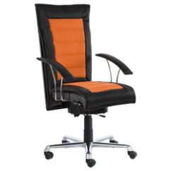 Office Chair Manufacturer Back Support Desk Executive From Mumbai