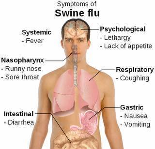 Swine Flu Treatment Service in Vasna, Ahmedabad | ID: 19036943712