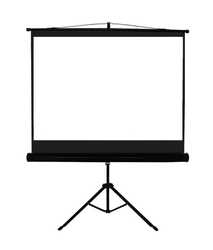 Manual Projection Screen at Best Price in India