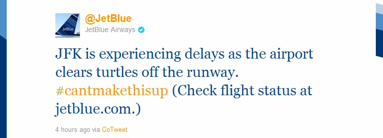 JetBlue Tweets About JFK Turtles