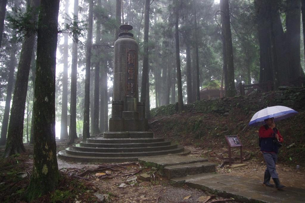 沿著步道走下涼亭。林中又有一紀念碑。這就是著名的樹靈塔