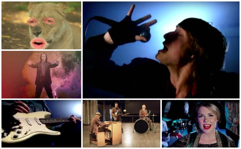 June 2009: Salmonella Dub, Sarah Brown, Solstate, The Checks, The Earlybirds, Trei