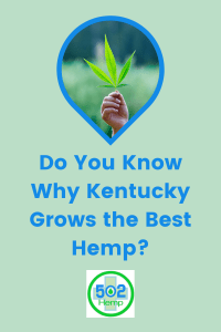 Do you know why Kentucky Grows the best hemp? Hero image