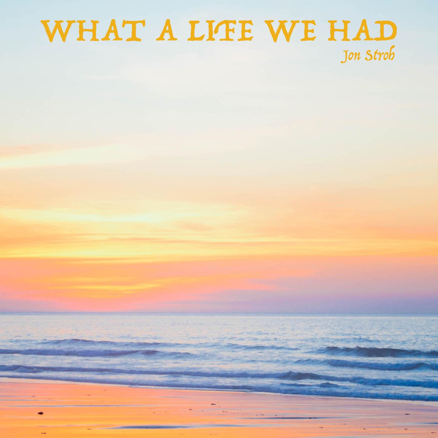 What a Life We Had - Jon Stroh