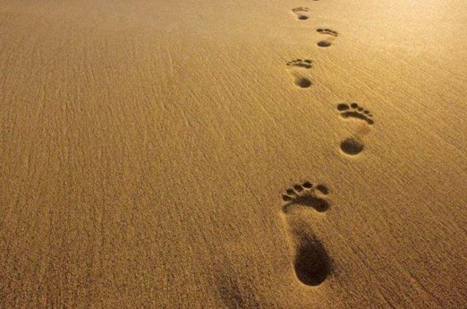 trace-de-pieds-nus-dans-le-sable-sans-trace