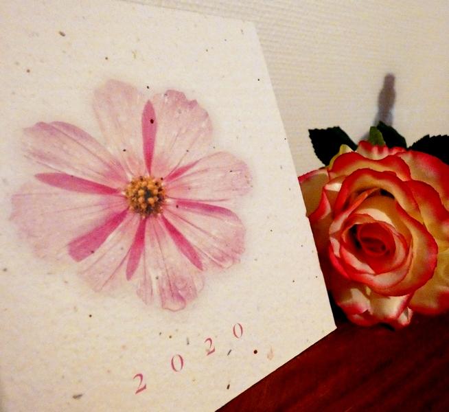 papier fleur carte de voeux ensemencée