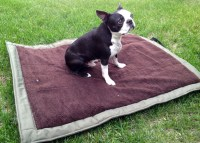 Dog Camping Bed - White Bed