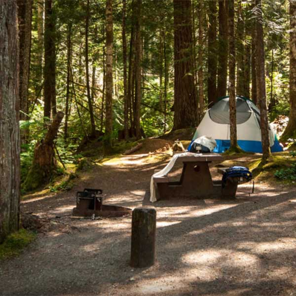 outdoor lovers are sure to love the Heart o' the Hills Campground in Washington's Olympic National Park
