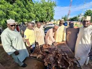 Northerners celebrate's Obaseki checkout how northerners celebrated obaseki's victory in gombe Checkout How Northerners Celebrated Obaseki's Victory In Gombe FB IMG 1600881074479 300x225 checkout how northerners celebrated obaseki's victory in gombe Checkout How Northerners Celebrated Obaseki's Victory In Gombe FB IMG 1600881074479