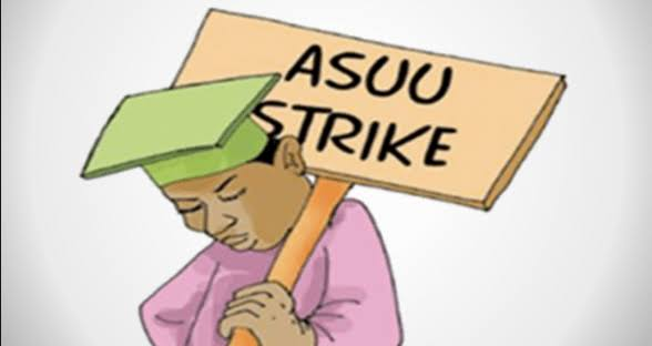 IPPIS Federal Government FG's Blackmail will not work, the IPPIS is a tool to weaken workers - ASUU Chairman FG's Blackmail will not work, the IPPIS is a tool to weaken workers – ASUU Chairman images 2020 10 05T113422