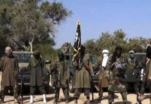 Boko Haram sects killed 43 farmers in Borno