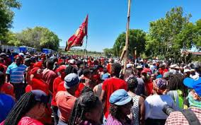 brackenfell high school - download 8 1 - Protest Rocks South Africa's Brackenfell High School Over Racist party