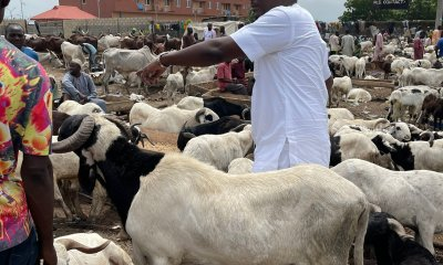 - 20210719 174027 - Reactions As Nigerian Politician Gives 100 Rams, ₦10 Million To Muslims In Ibadan