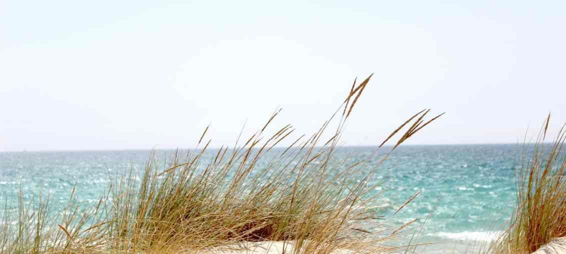 deserted island, essential skincare