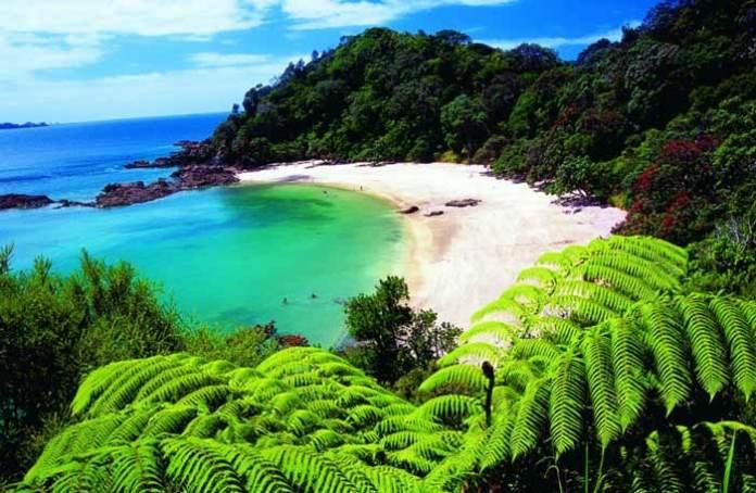 secret hotspots in New Zealand