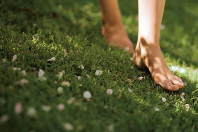 barefoot in park in 2020