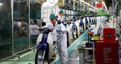 Honda Cub production