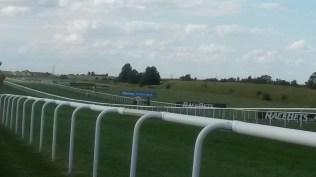 The race course