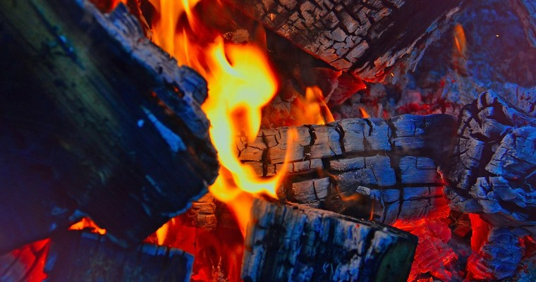 Firewood Rules for Camping in Upstate NY [LIST]