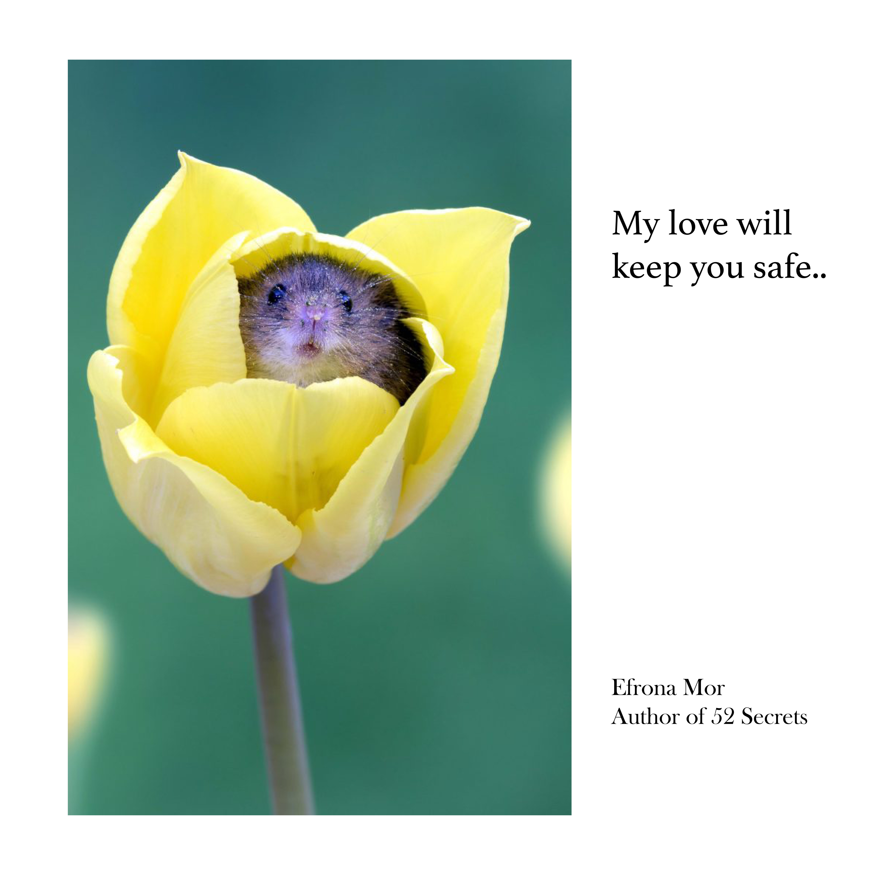 My-love-will-keep-you-safe-3500