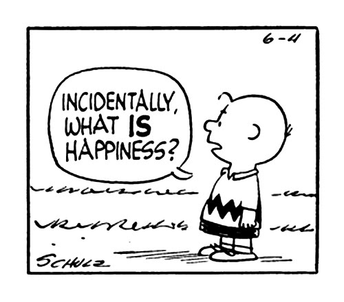 """Charlie Brown in a cartoon asks, """"Incidentally what is happiness?"""""""