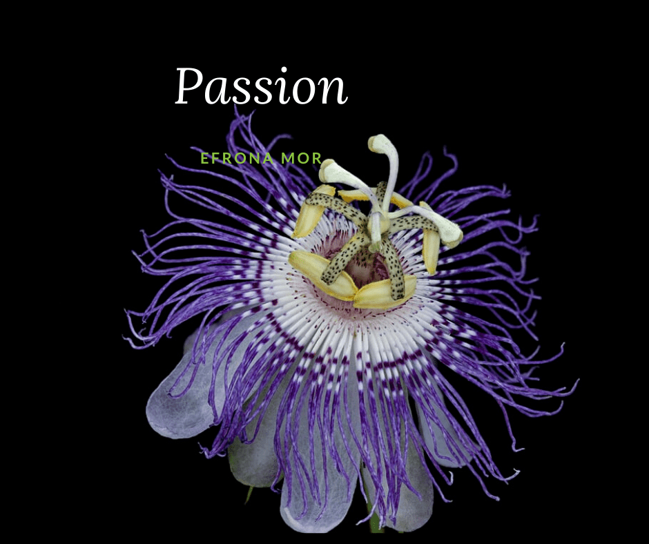 love quote about passion with a picture of at the passion flower fruit flower