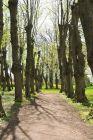 Impression Park Jersbek (Quelle Bruno Krautz)