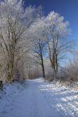 Winter Klein Hansdorfer Brook (Quelle Bruno Krautz)