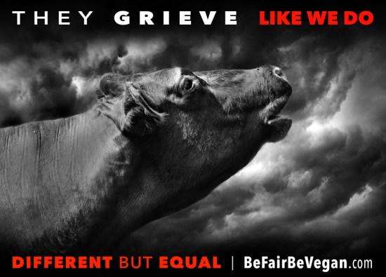 like 18-grieve