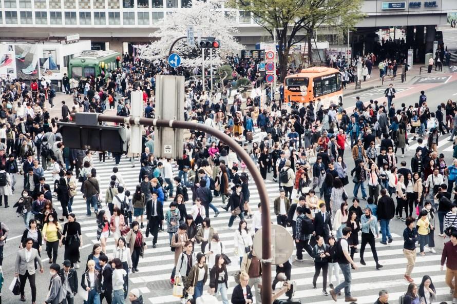 Shibuya Crossing - Tokyo itinerary 7 days