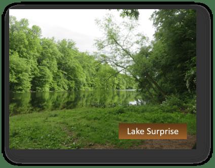 Lake Surprise