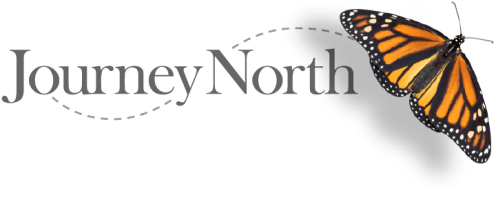 Journey North_org logo