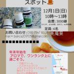 島ゆる♡セラピースポット